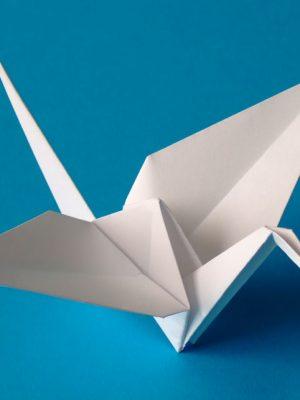Origami – The Art of Paper Folding – eBook