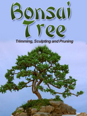 Bonsai Trees – eBook