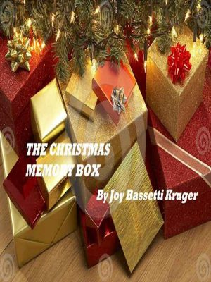Sandra's Christmas Memory Box – Joy Bassetti Kruger – eBook