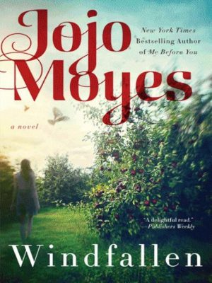 Windfallen – Jojo Moyes – eBook